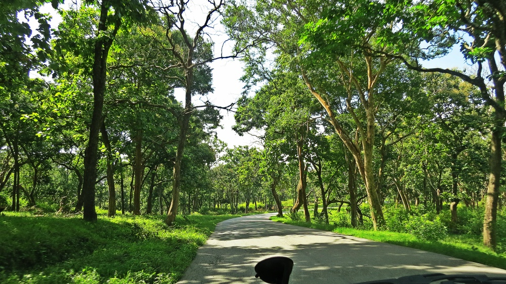 Bandipur National Park life on weekends