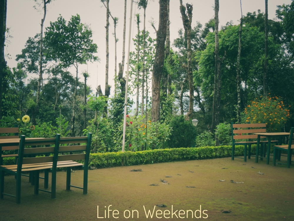 Munnar, Kerala at Life on weekends.com