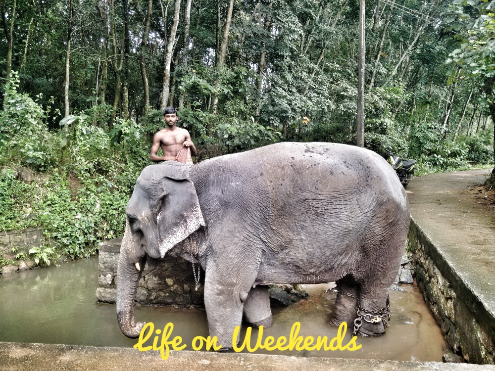 Vinayaka @Life on Weekends