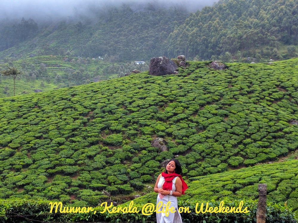 Munnar @ Life on Weekends