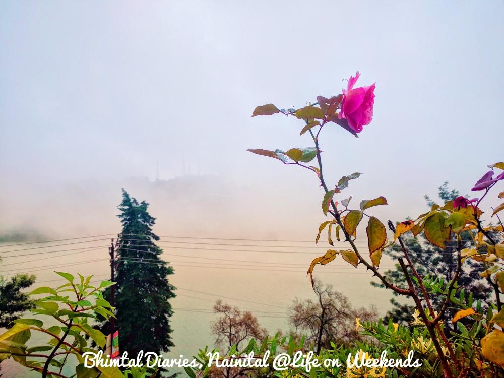 Bhimtal Diaries, Nainital @Life on Weekends