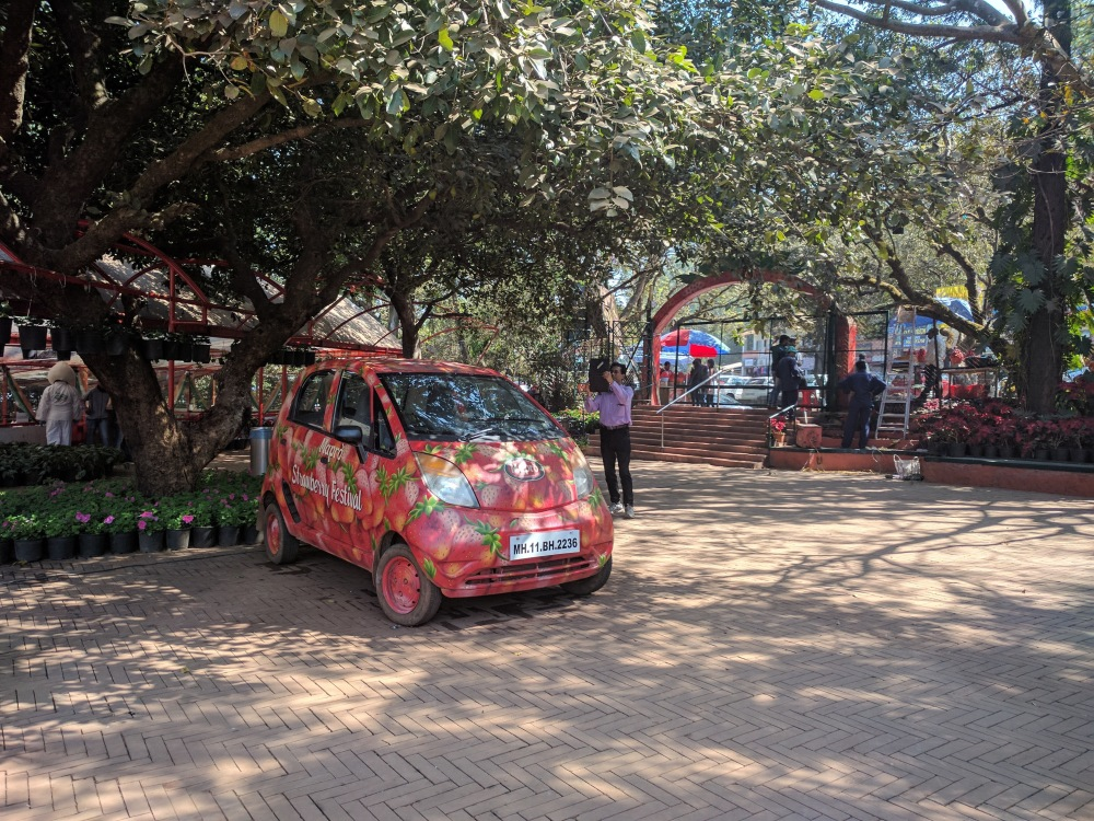 Maroon strawberry farms, Panchgani, Mahabaleshwar @Life on Weekends