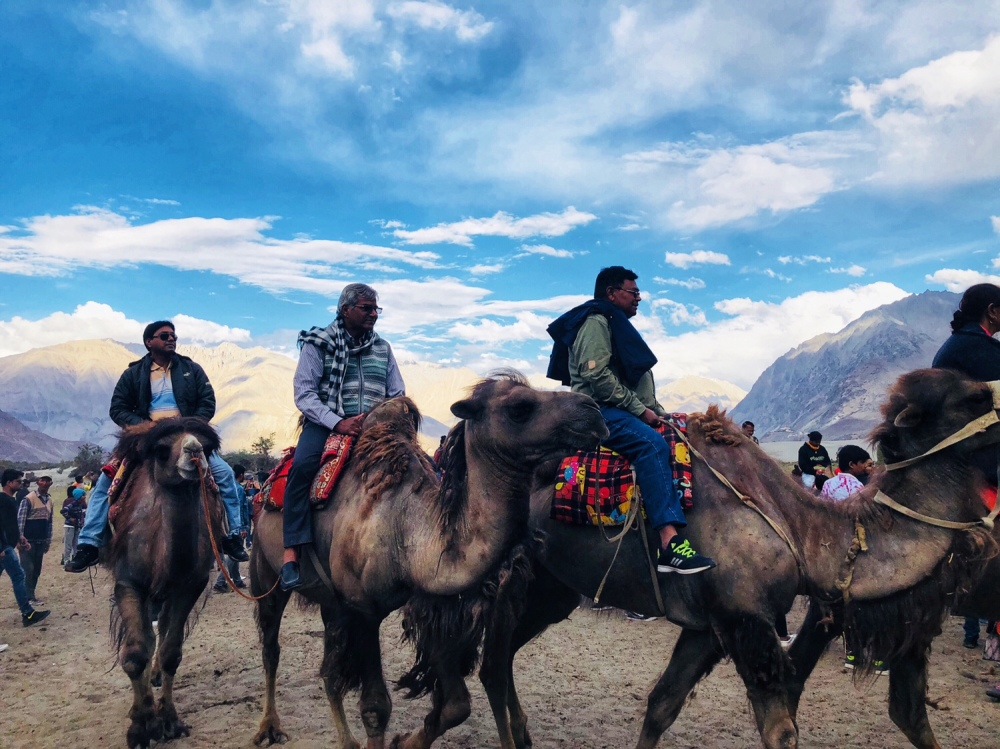 Nubra Valley, Leh & Ladakh, Jammu and Kashmir