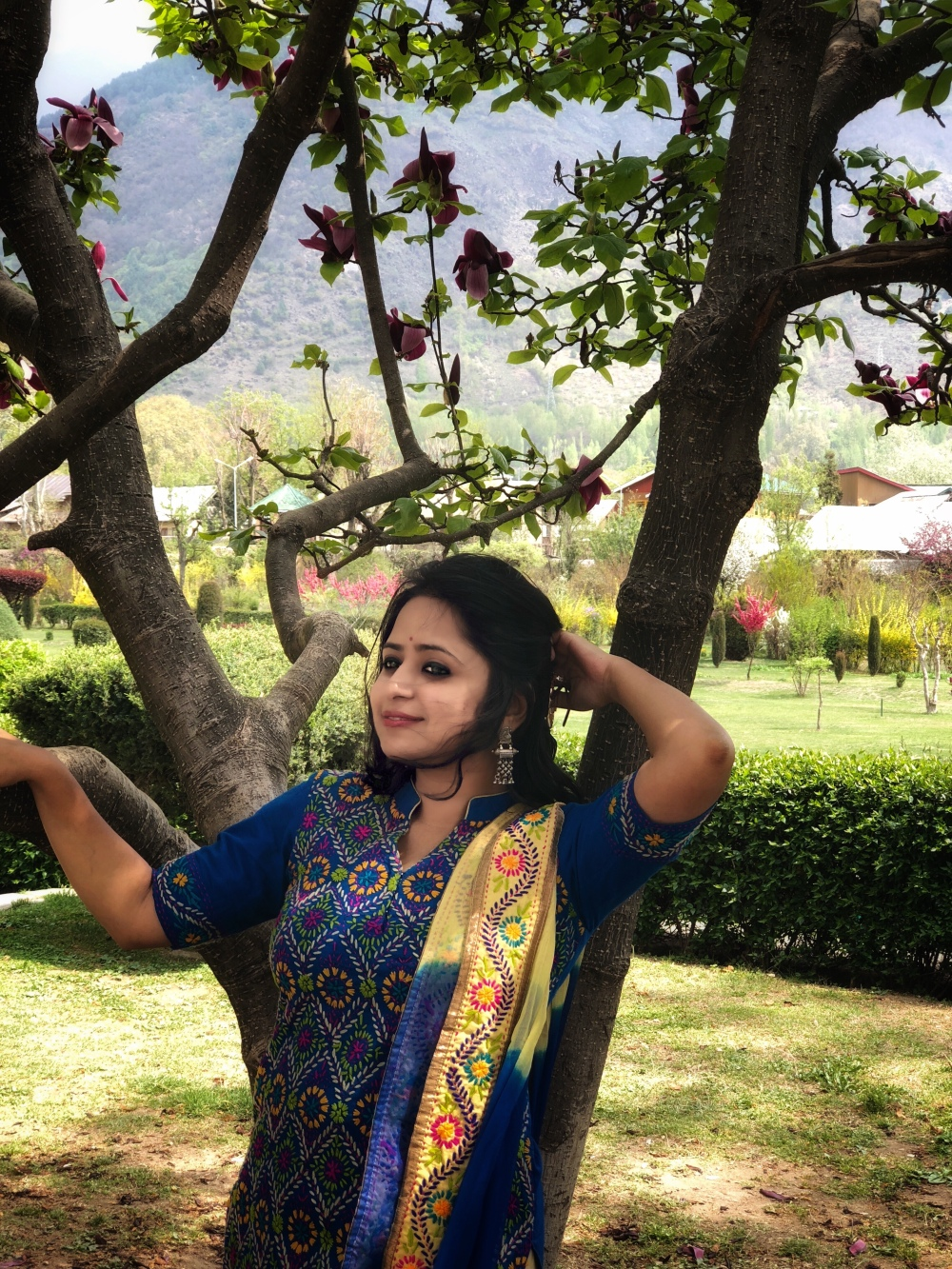 Tulip Gardens, Kashmir, Jammu and Kashmir